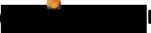 정성규 낙엽타는향기 홈페이지